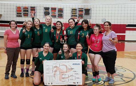 Volleyball: Bump, Set, Conquer