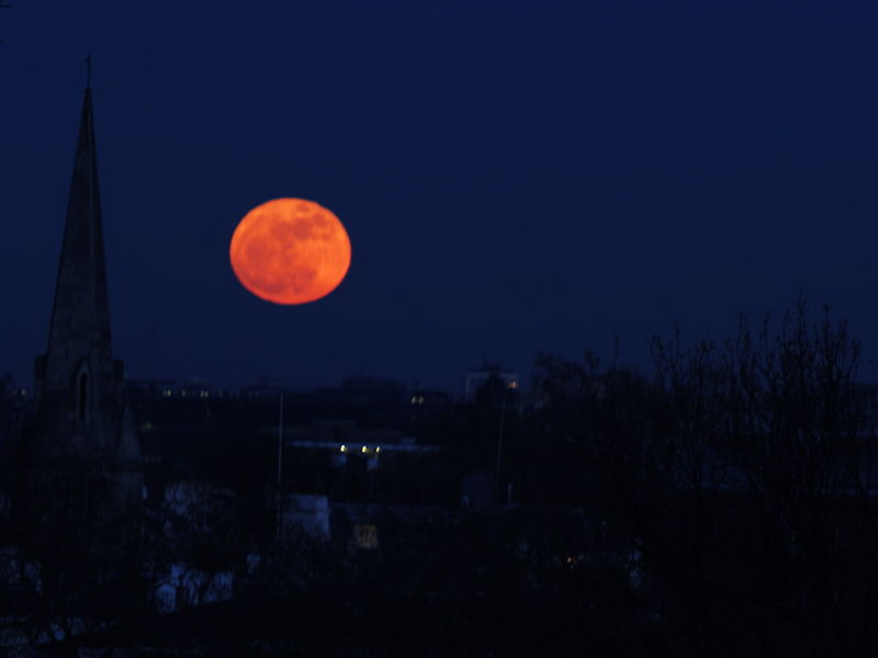 Don't Miss the Super Unusual Super Moon