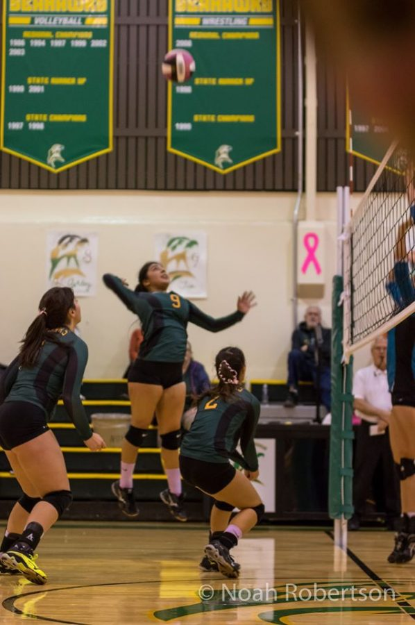 V is for Volleyball & Victory