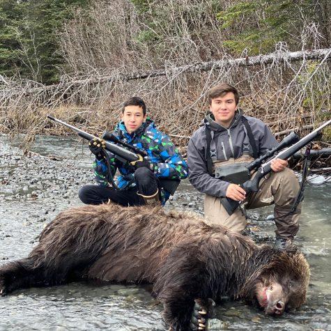 2020 Fall Brown Bear