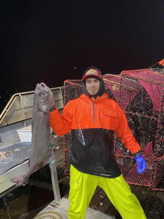 Majestik Fisheries LLC